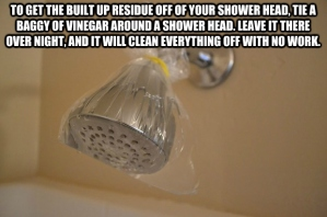 Tie a baggy filled with vinegar to clean shower head