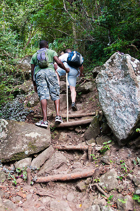 The Gros Piton Nature Trail