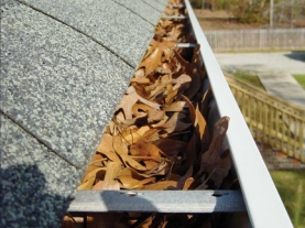 Remove leaves from gutters and downspouts